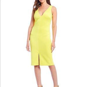 Belle Badgley Mischka Dress